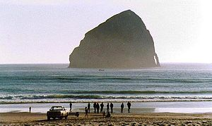 English: Haystack Rock near Cape Kiwanda, Oreg...